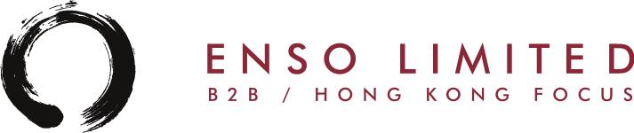Enso Limited – B2B Company